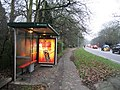 Bus Stop on Trumpington Road - geograph.org.uk - 647712.jpg