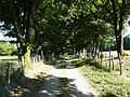 Busserolles GR4 entre Chareyroux et Forêt.JPG