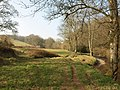By the River Dart - geograph.org.uk - 2319050.jpg