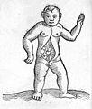C. Lycosthenes, Prodigiorum ac ostentorum chronicon. Wellcome L0030204.jpg
