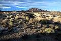 CA - 3500 -NEVADA CAMPSITE (9-24-2015) near tonopah, nye co, nevada (7) (21963704122).jpg