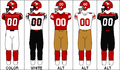 CFL Jersey CGY 2009.PNG