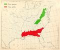 CL-43 Pinus pungens & Pinus glabra range map.png