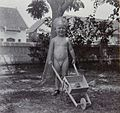 COLLECTIE TROPENMUSEUM Portret van een jongen met zijn kruiwagen in de tuin Soerabaja TMnr 60053715.jpg