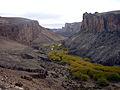 Cañadón del Río Pinturas - Cueva de las Manos-Sta Cruz-Argentina.JPG