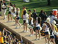 Cal Dance Team at 2008 Big Game 6.JPG