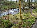 Calder Water, East Kilbride - geograph.org.uk - 342428.jpg