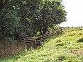 Calfhole Beck, near West Carlton - geograph.org.uk - 45971.jpg