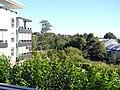 Camperdown, Sydney, Australia - panoramio.jpg