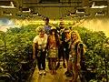 Cannabis tour group.jpg