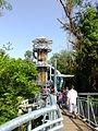 Canopy walkway Makó 02.JPG