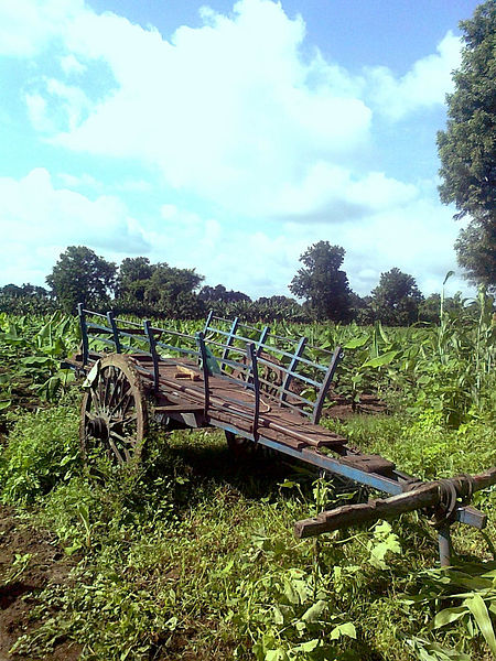 File:Cart Chinawal 2.jpg