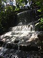 Cascada Parque Ecológico Chapultepec.jpg