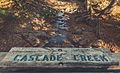 Cascade Creek, Cascade River State Park, Minnesota (24478446304).jpg
