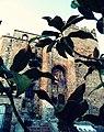 Castillo entre hojas.JPG