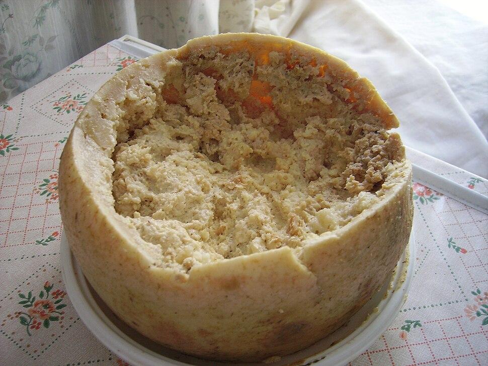 Casu Marzu cheese