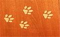 Cat tracks cheverny expo tintin.JPG