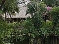 Cenote en Chichén Itzá. Quintana Roo. México-15.jpg