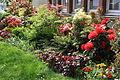 Centre horticole de la Ville de Paris a Rungis 2011 011.jpg