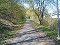 Cesta podél Radotínského potoka - panoramio.jpg