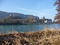 Châteaux vieux et neuf de Vertrieu (Isère).jpg
