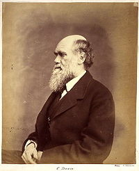 Charles Darwin photograph by Ernest Edwards, circa 1866.jpg