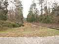 Chattahoochee Bay Railroad - Dam Road - Gordon AL.jpg