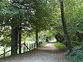 Chemin d'accès à la Sylve bénite depuis Oyeu.jpg