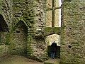 Chepstow castle - geograph.org.uk - 1125336.jpg