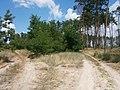Cherkas'kyi district, Cherkas'ka oblast, Ukraine - panoramio (1609).jpg