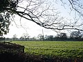 Cheshire farmland - geograph.org.uk - 345014.jpg