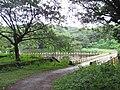 Chimmini Wildlife Sanctuary IMG 7012.JPG