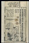 Chinese Materia medica, C17; Plant drugs, Chrysanthemum Wellcome L0039340.jpg