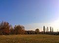 Chisinau dendrarium - skyline and grass field.jpg