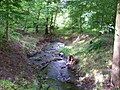Chlumec, Ždírnický potok, z mostu U zámeckého rybníka po proudu.jpg