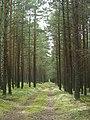 Chojnice, Poland - panoramio (21).jpg