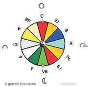O Chi circula através dos meridianos em um ritmo estabelecido pela transformação do Yin em Yang sucessivamente.