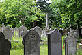 City of London Cemetery - Across cemetery 01.jpg