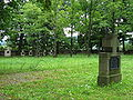 Cmentarz nr 91 w Gorlicach.JPG