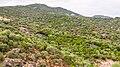 Coal mine tailings, Osani, Corsica.jpg