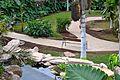 Colección Palmetum de Santa Cruz de Tenerife 10.JPG