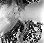 Columbia Glacier, Valley Glacier Ogive, July 30, 1978 (GLACIERS 1110).jpg