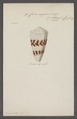 Conus augur - - Print - Iconographia Zoologica - Special Collections University of Amsterdam - UBAINV0274 087 01 0019.tif