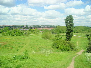 South Norwood Country Park - A section of South Norwood Country Park, In the background you can also see the Crystal Palace Aerial