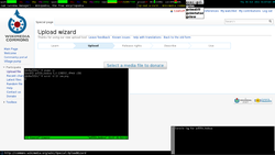 OpenBSD desktop managed with cwm running xstatbar, xconsole, xxxterm and uxterm (with tmux, scrot and man)