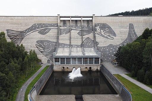 Talsperre Eibenstock mit Reverse Graffito Fisch-Reich (Klaus Dauven)
