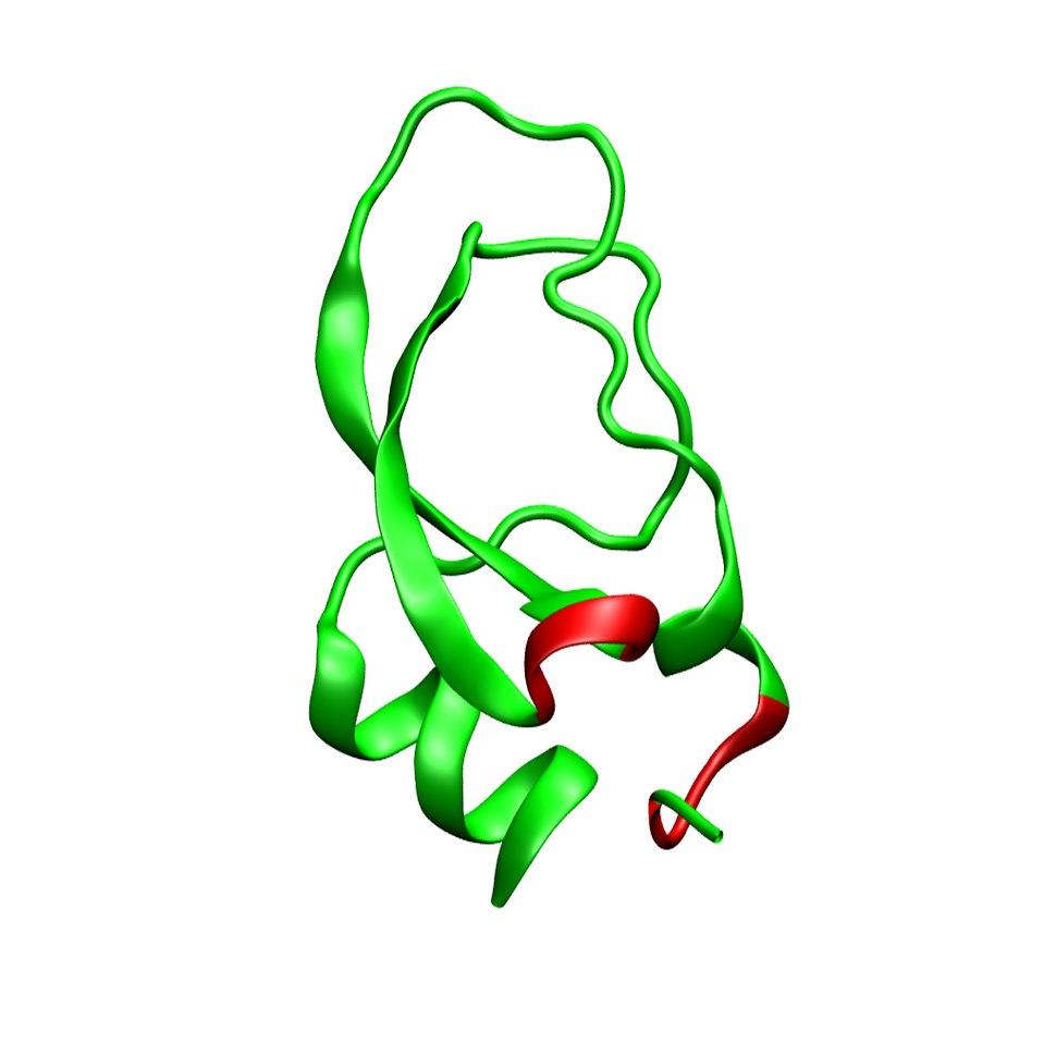 Dendrotoxin alpha