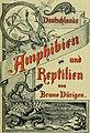 Deutschlands Amphibien und Reptilien (1890) (20700454020).jpg