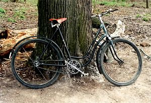 Diamant (German bicycle company) - A Diamant from 1960
