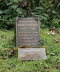 Dian Fossey's grave (cropped).jpg